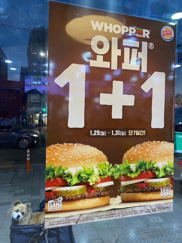 diabetes burger king whopper